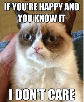 Example cat meme